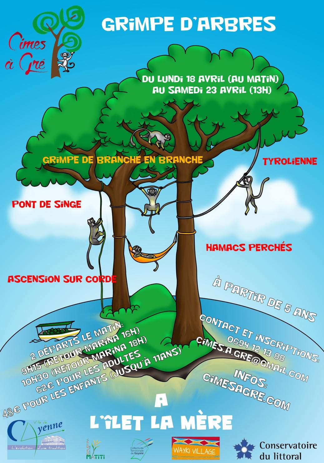 Ateliers arboricoles Îlet la Mère - Cayenne