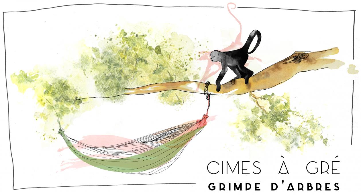 Cimes à Gré : Grimpe Encadrée dans les Arbres, et découvertes nature pour tous, en Guyane française